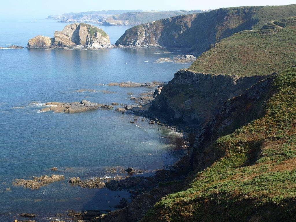 A quoi servent vraiment les aires marines protégées ?
